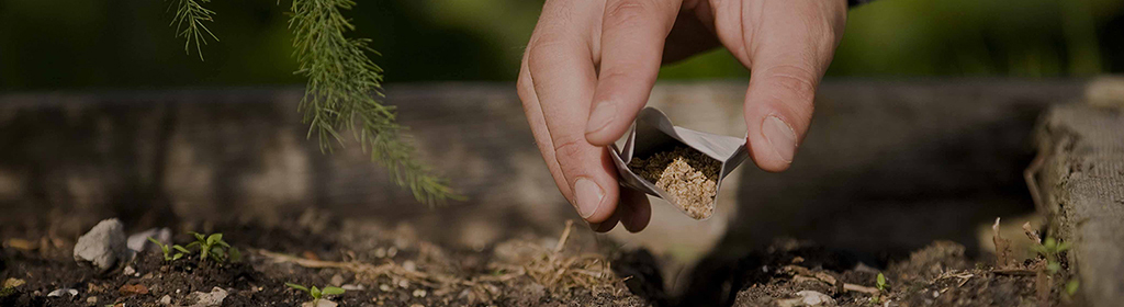 Semillas que crecen contigo